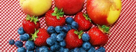 Fruit 520x200