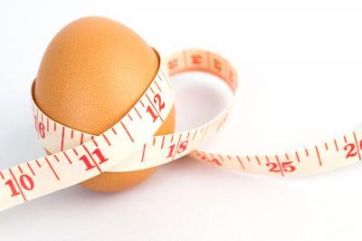 Oeufs perte de poids